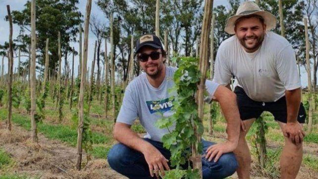 El viñedo de Arteaga se implantó en 2019 y esperan la primera cosecha para 2022.
