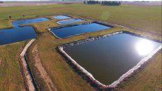 como transformar un problema en una solucion: uso agronomico de compost en feedlot