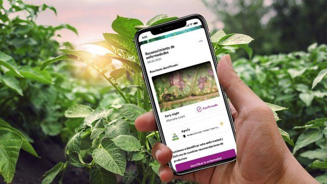 Agrofy y xarvio se unen para darle más soluciones al agro
