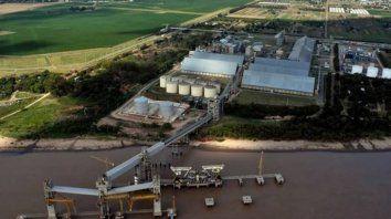 Complejo oleaginoso. La industria aceitera mejoró la actividad.