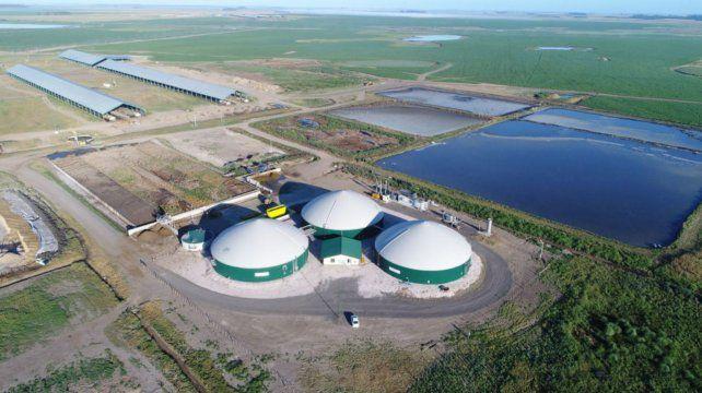 integración. La empresa en Christophersen tiene un esquema integrado de producción de alimentos y energía.