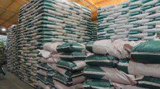 semilleros multiplicadores se preparan para un ano de intenso trabajo