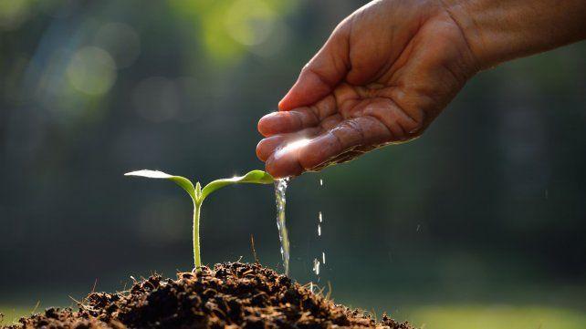 Lanzan alianza global para descarbonizar la agricultura