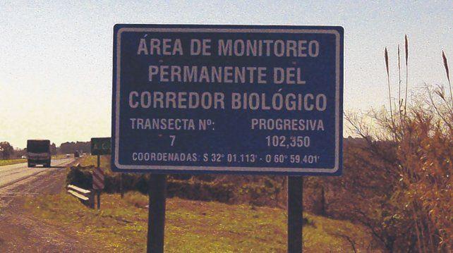 Integración. En la autopista se puso en marcha el corredor biológico hace una década para equilibrar un ecosistema alterado por el monocultivo.