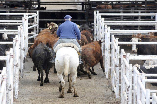La foto del día después al cierre de las exportaciones de carne