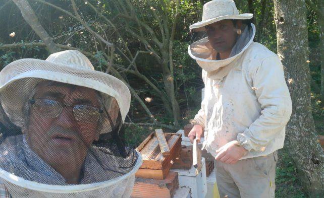La apicultura no es sólo producción de miel. Desde Malabrigo