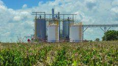 Biocombustibles: sin prórroga de la ley, advierten que habrá cierres masivos de industrias