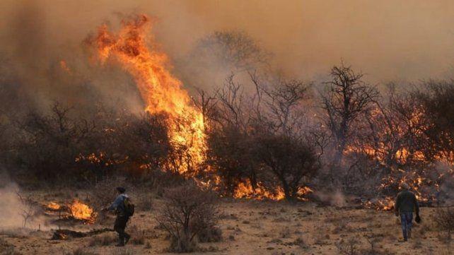 En La Pampa pasamos de tener 2 millones de hectáreas con riesgo entre moderado y severo a 4