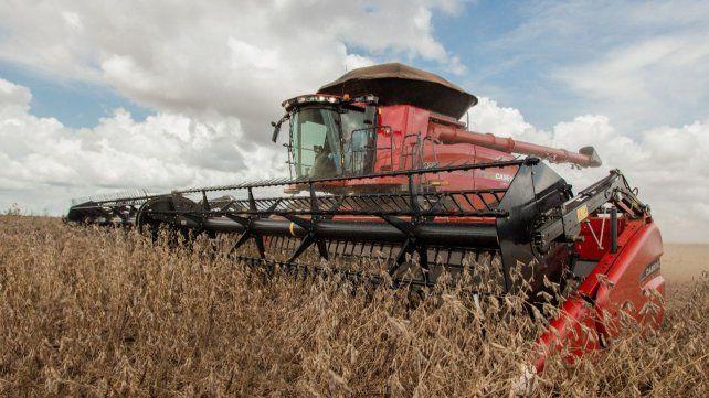 La fuerte caída de la producción de soja fue atribuida a la variable distribución de las precipitaciones a lo largo de todo el ciclo del cultivo.