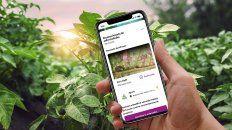 agrofy y xarvio se unen para darle mas soluciones al agro