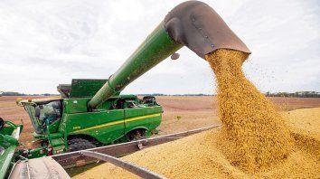 La producción total de granos de la campaña 2020/21 se encamina a las 126 millones de toneladas.