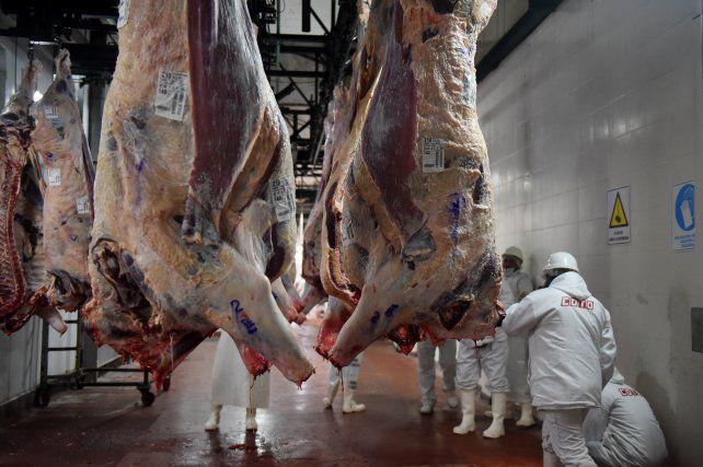 economia-frigorifico-carne-cm-74413542jpg
