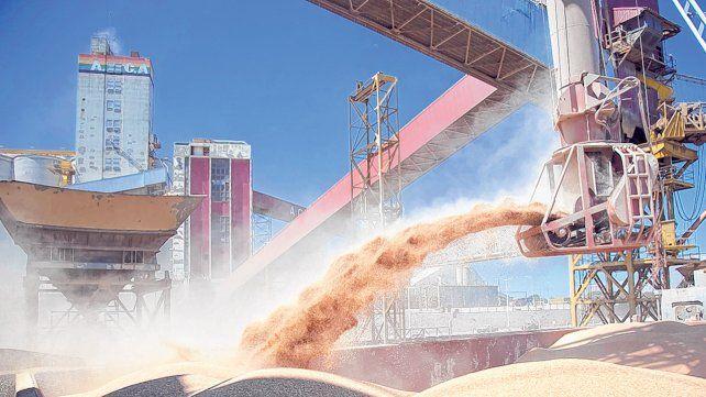 Los precios del poroto y el aceite de soja muestran niveles récords en el mercado externo.