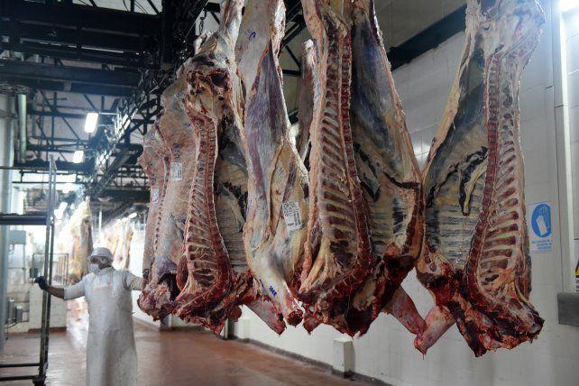 Conflicto. El gobierno nacional cerró termporalmente las exportaciones de carne