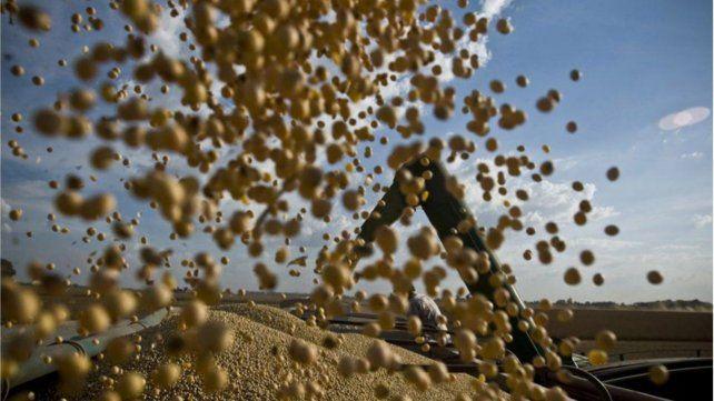 Los precios de la soja treparon a valores máximos que no se veían desde 2014 en Chicago.