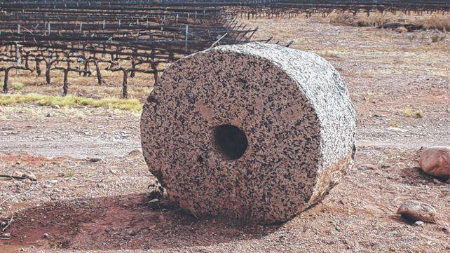 viñedos. Las distintas producciones de alimentarias se enfrenta a una demanda que reclama sustentabilidad.