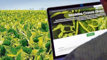 tech. El modelo desarrollado por la Fauba, el Inta y el Conicet permite reducir la incertidumbre a la hora de tomar decisiones de manejo en el cultivo de soja.