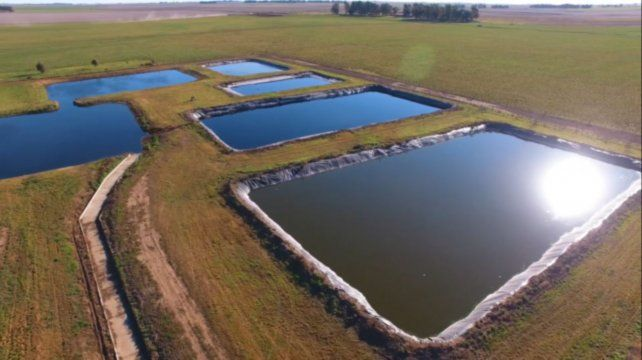 Cómo transformar un problema en una solución: uso agronómico de compost en feedlot