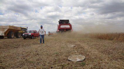 En el lote quedaron tirados 2,37 millones de toneladas de granos de soja.