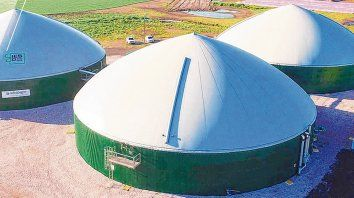 Biodigestor para producir energía renovable con los residuos del tambo.