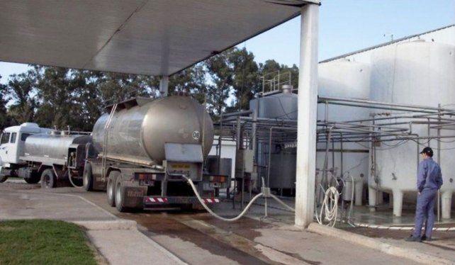 Octubre es el mes de mayor recibo en la industria láctea